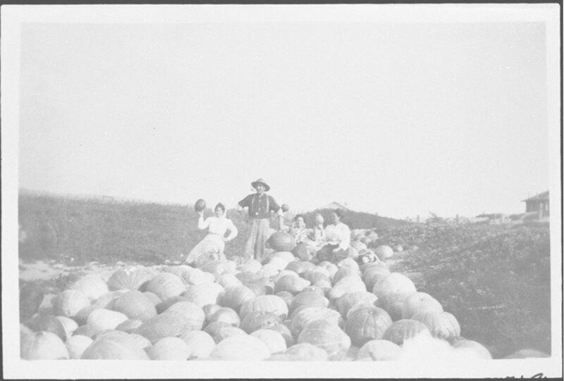 Group Photo in a Mass of Pumpkins