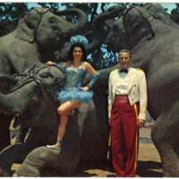 Jo and James Madison with Five Jungleland Elephants, Jungleland, Thousand Oaks postcard