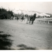 Trotting Races at Ventura Fairgrounds
