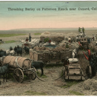 Threshing Barley on Patterson Ranch postcard