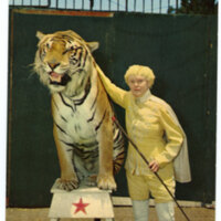 Jungleland Tiger Trainer and Tiger postcard