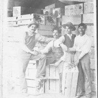Boxmakers at Blanchard Packinghouse in Santa Paula