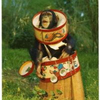Little Chim, Jungleland, Thousand Oaks postcard