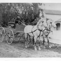 L.D. Roberts with his team and wagon