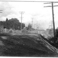 Telegraph Road, 1900