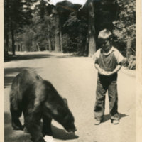 Young boy and a black bear