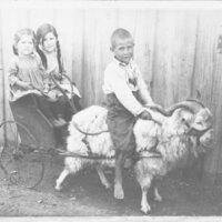 Children on Goat Drawn Wagon