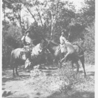 Reginaldo Ruiz and John Dalton Deer Hunting