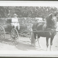 Katherine L. Hoffman Driving a Horse and Wagon