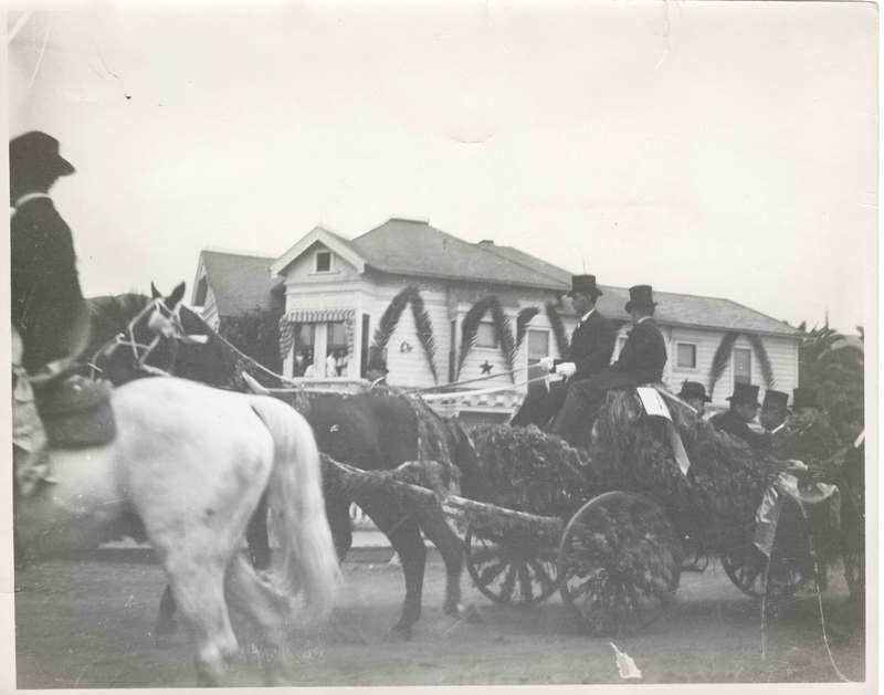 Thomas Bard in horse-drawn buggy in a parade