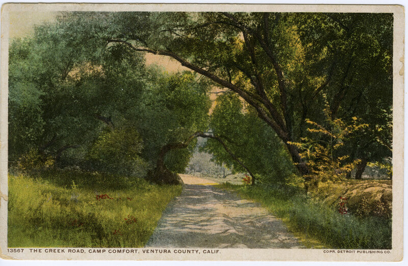 The Creek Road, Camp Comfort Postcard