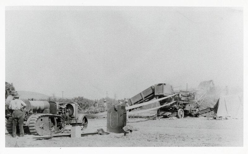 Bean Threshing With Yuba Tractor