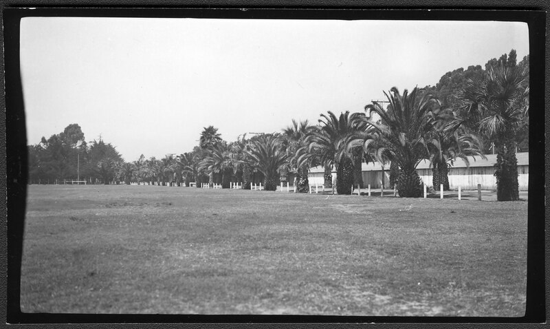 Lawn at Seaside Park