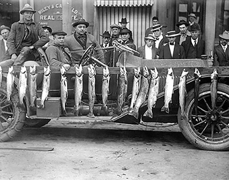 Men Pose with Steelhead Fish