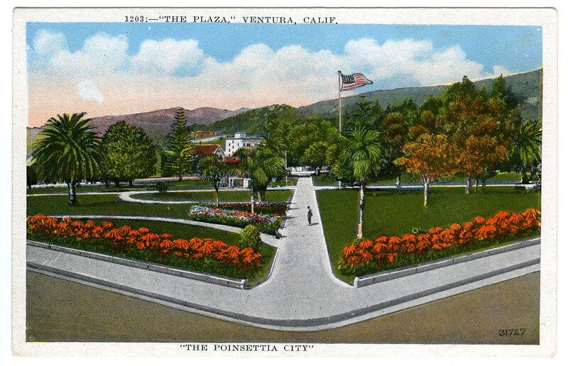 The Poinsettia City Postcard
