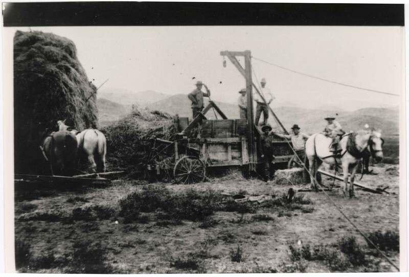 Hauling Grain in Simi