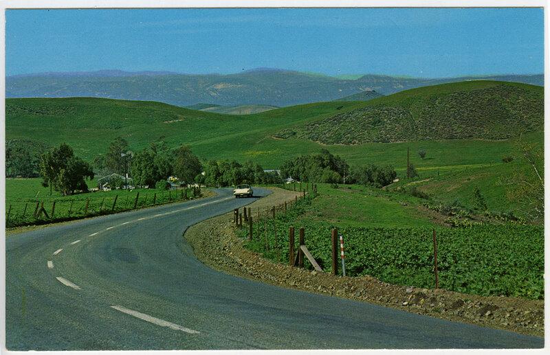 Picturesque Roadway postcard