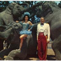 Jo and James Madison with Five Jungleland Elephants, Jungleland, Thousand Oaks postcard