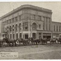 J.M. Montgomery 16 Mule Plow Team, Ventura, Cal. Post Card