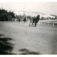 Trotting Races at Ventura Fairgrounds