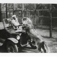 Louis Gobel and Lion
