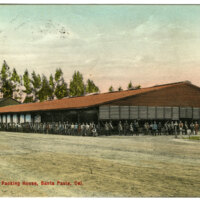 Lemon-Packing House, Santa Paula postcard