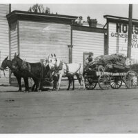 Mail and Freight on a Mule Drawn Wagon