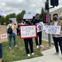 Variety of Protest Signs