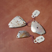 Shell Beads and Adornments