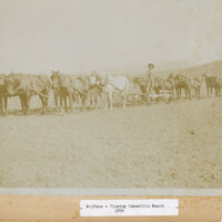Billie Wolfson Plowing Calleguas Rancho