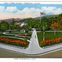 The Poinsettia City Postcard