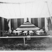 Rancho Sespe fair exhibit