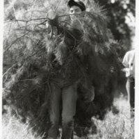 Young Man Carries Christmas Tree