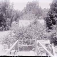 gp335.jpg