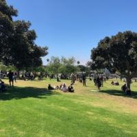 Protestors in Cemetery Park