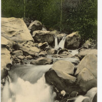 Creek Scene, Matilija Near Ventura, Cal postcard